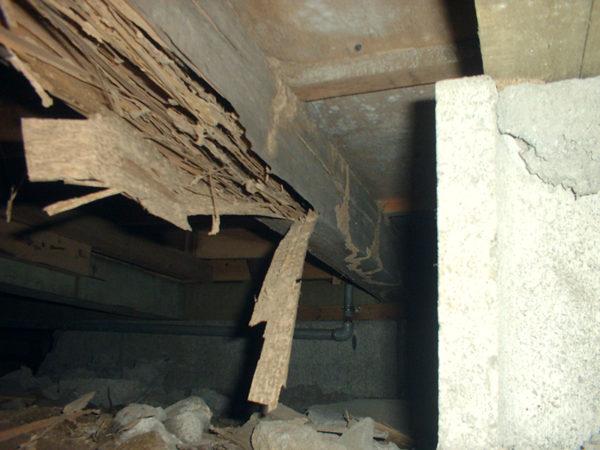 床下大引き被害