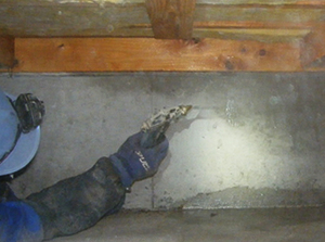 土壌処理と表面吹き付け処理